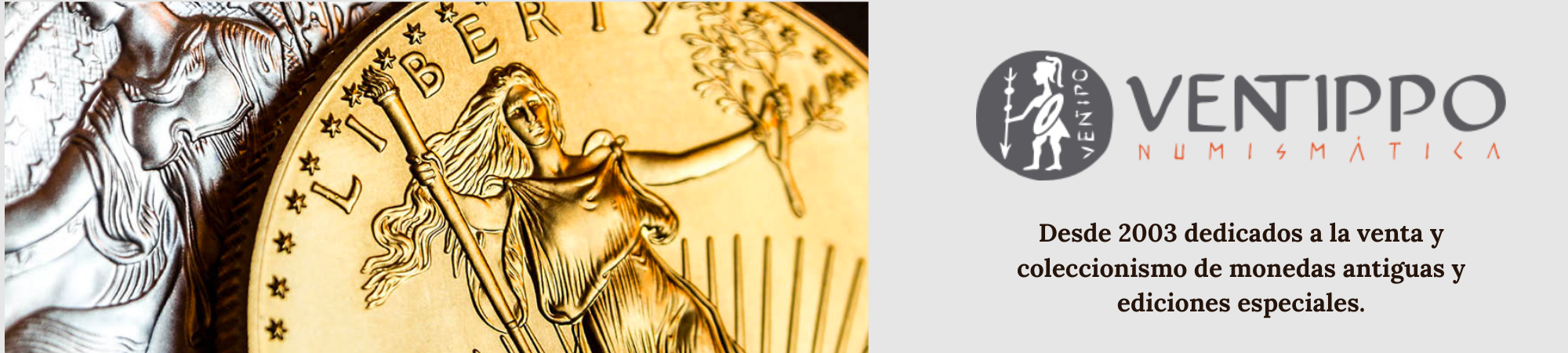 banner numismatica ventippo